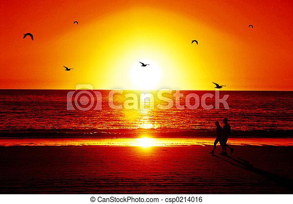sunset view - csp0214016