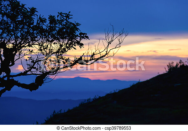 Sunset with silhouette tree on high mountain - csp39789553