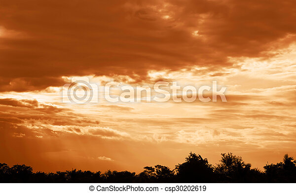 sunset with tree silhouette - csp30202619
