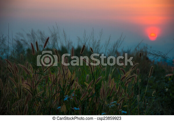 sunsets - csp23859923