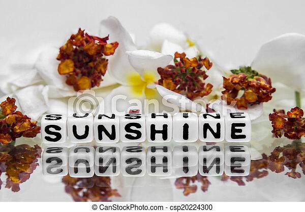 Sunshine - csp20224300