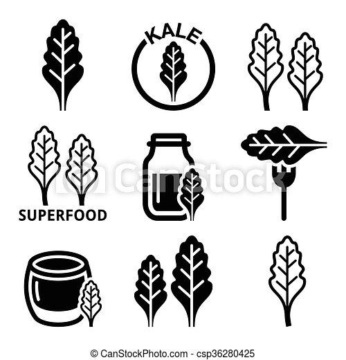 superfood, bladeren, -, boerenkool, iconen - csp36280425