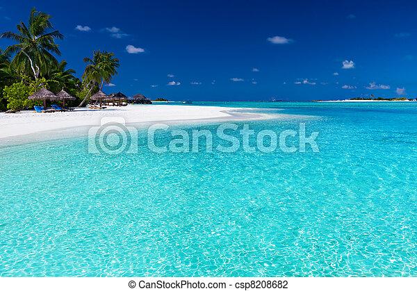 sur, arbres, abrutissant, paume, lagune, plage blanche - csp8208682