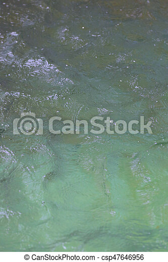 surface of the water. - csp47646956