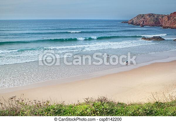surfen, sandstrand, portugal. - csp8142200