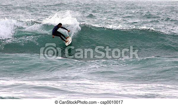 Surfer - csp0010017