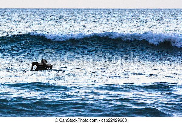 Surfer Silhouette - csp22429688