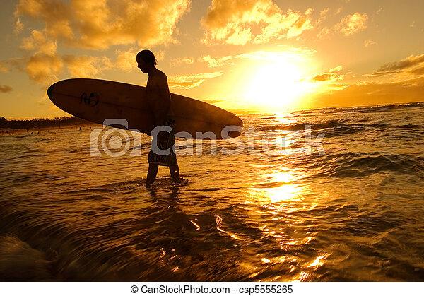 Surfer silhouette - csp5555265