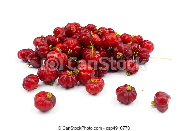 Surinam Cherry - csp4910773