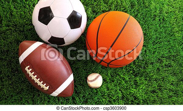 El surtido de pelotas deportivas sobre la hierba - csp3603900
