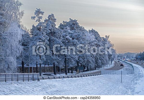 Svezia stoccolma inverno inverno stoccolma albero for Immagini per desktop inverno