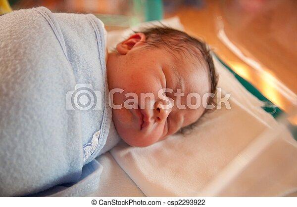 Swaddled new born baby - csp2293922
