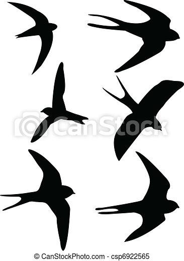 Swallows silhouettes - csp6922565