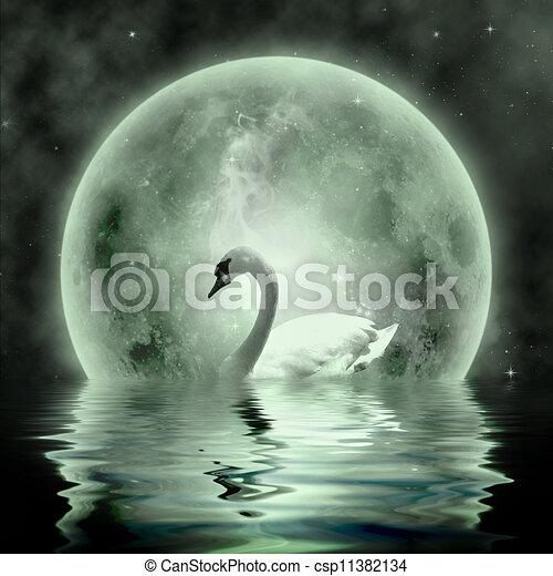 Swans By Moonlight >> Moonlight Swan Beautiful Swan Under The Moonlight
