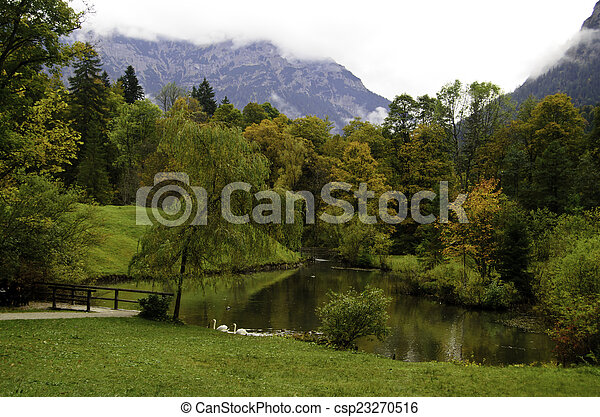 Swans on a pond - csp23270516