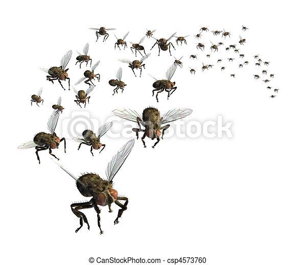 Swarm of Flies - csp4573760