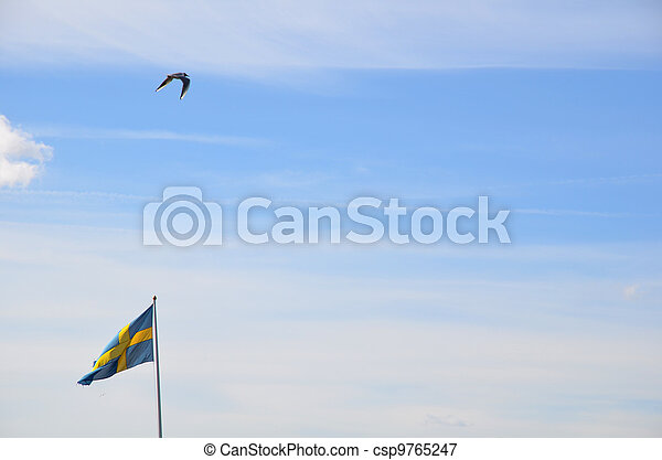 Swedish flag - csp9765247