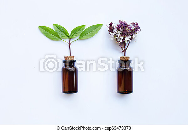 Sweet Basil with Essential Oil in a Glass Bottle - csp63473370