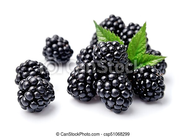 Sweet Blackberries Fruits On The White Background