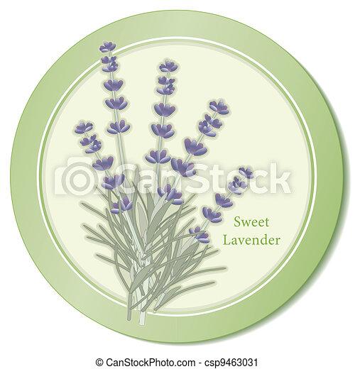 Sweet Lavender Herb Icon - csp9463031
