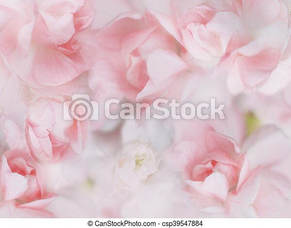 Sweet pastel flowers background sweet pastel flowers with soft sweet pastel flowers background csp39547884 mightylinksfo