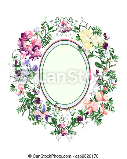 Sweet pea frame. Decorative floral frame from sweet pea flowers and ...