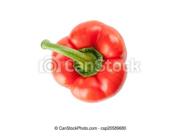 Sweet red pepper - csp20589680