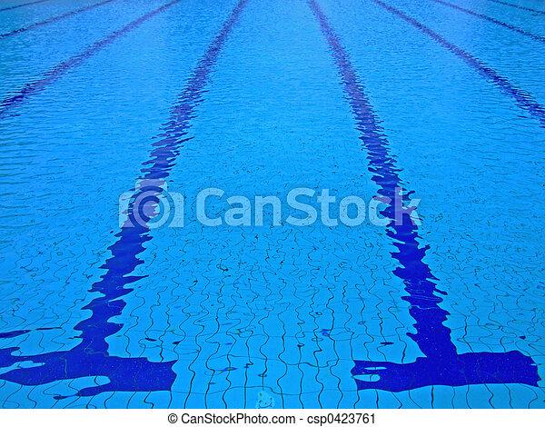 swimming pool stock photo - Olympic Size Swimming Pool