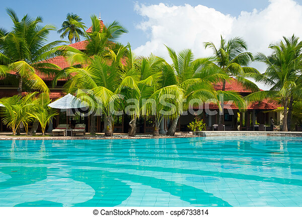 Swimming Pool With Palm Trees Cristal Clear Swimming Pool Stock Photo Search Photographs