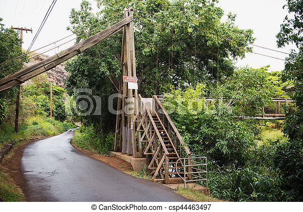Swing Bridge At The Menehune Ditch