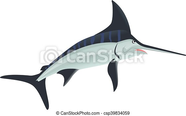 Line Art Of Fish : Sword fish sea animal. isolated on white vector illustration clipart