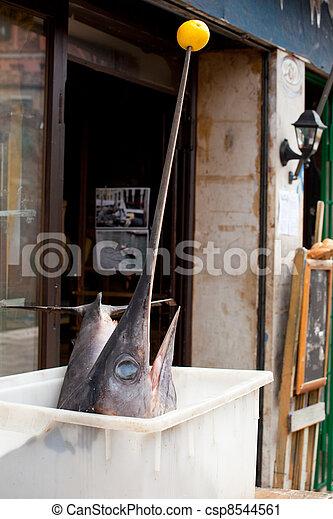 Swordfish  - csp8544561