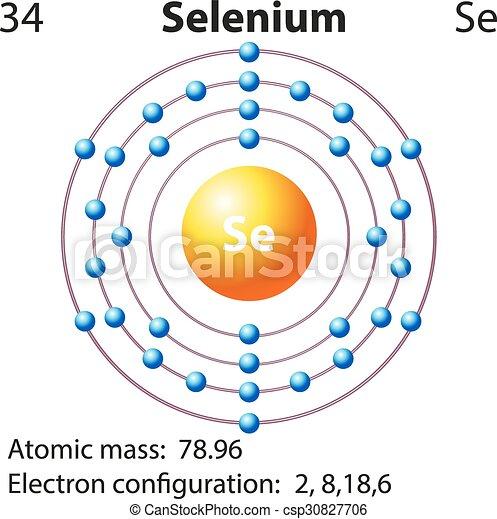 Symbol And Electron Diagram For Selenium Illustration