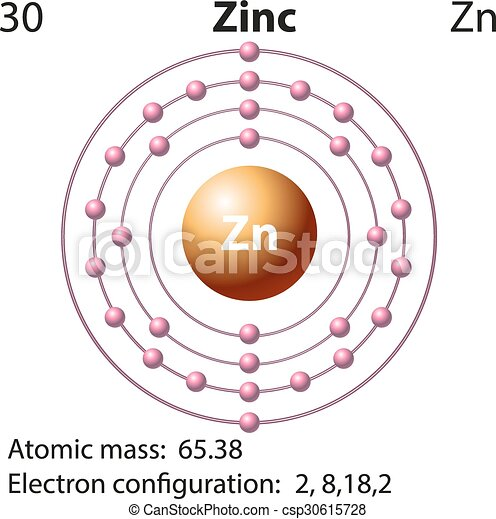 Symbol and electron diagram for zinc illustration vector symbol and electron diagram for zinc csp30615728 ccuart Images