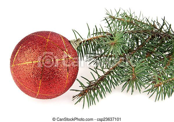 Kugel Für Tannenbaum.Szenerie Kugel Tannenbaum Zweig