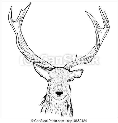 T te cerf dessiner cerf main vecteur head - Comment dessiner un cerf ...