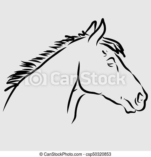 T te cheval lipizzan t te lipizzan main dessin - Dessin tete de cheval ...