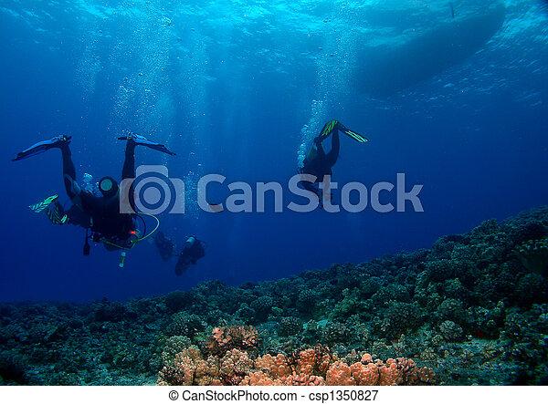 Buzos de buceo regresando al barco - csp1350827