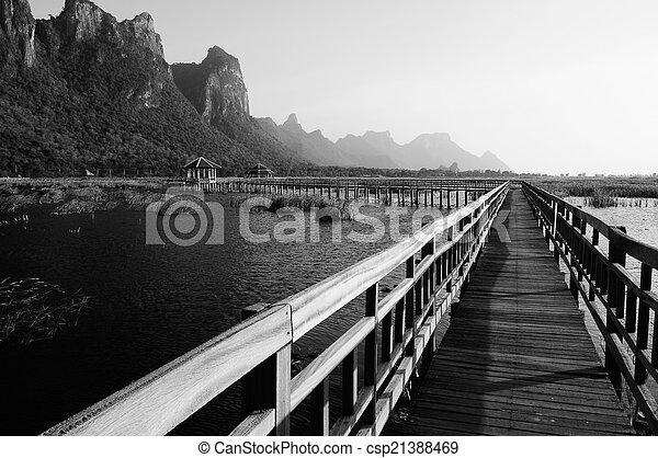 tó, liget, bridzs, nemzeti, gyalogjáró - csp21388469