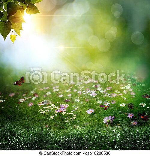 tôt, naturel, résumé, arrière-plans, profond, matin, forest. - csp10206536