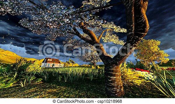 tôt, printemps, verger, temps - csp10218968