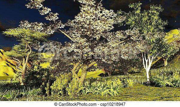 tôt, printemps, verger, temps - csp10218947