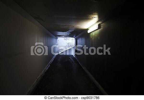 Luz al final del túnel - csp9031786