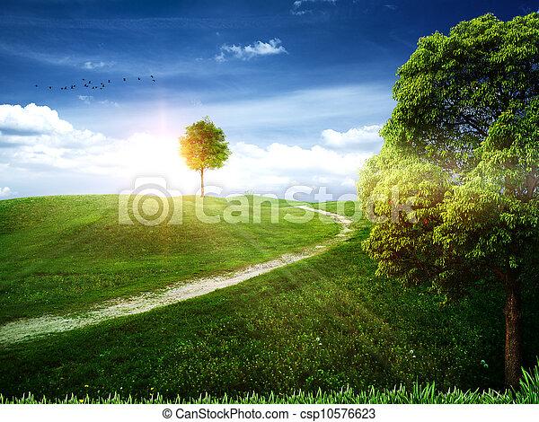 tła, kasownik, sztuka, drzewo jabłka - csp10576623