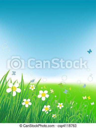 tło, lato, zielone pole, motyle - csp4118763