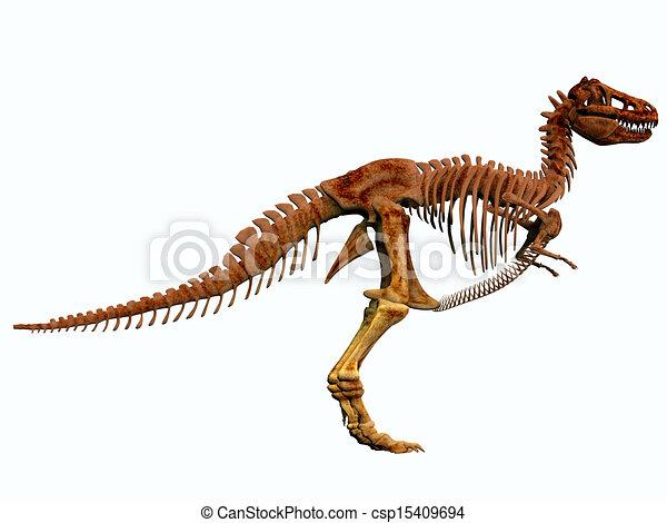 T-Rex Skeleton - csp15409694