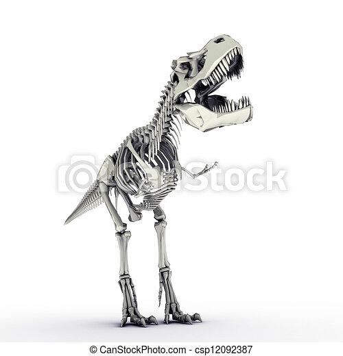 t-rex skeleton - csp12092387