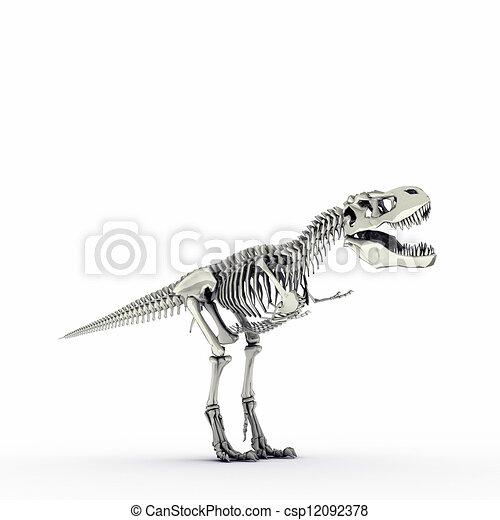 t-rex skeleton - csp12092378