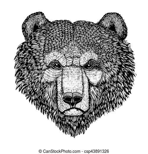 T Shirt Image Illustration Main Vecteur Ours Affiches Sauvage