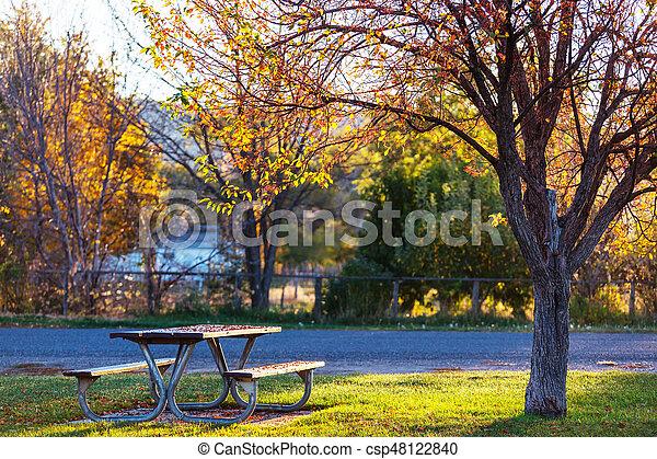 Mesa de picnic - csp48122840